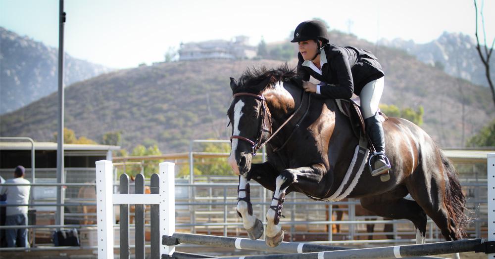 Poway Equestrian Center Horse Jumping